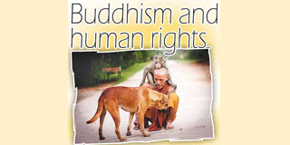 Buddhism and Human Rights