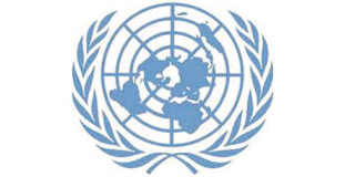Incompatible UNHRC and UNSG's panel of experts guidelines