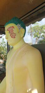 Tamil Extremist damage Buddha Statue in University Jaffna