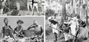Question of Indian Tamils & Ceylon Tamils & Disenfranchisement